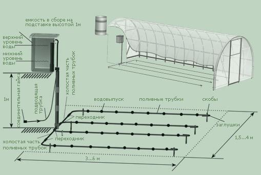 Капельная система полива в теплице